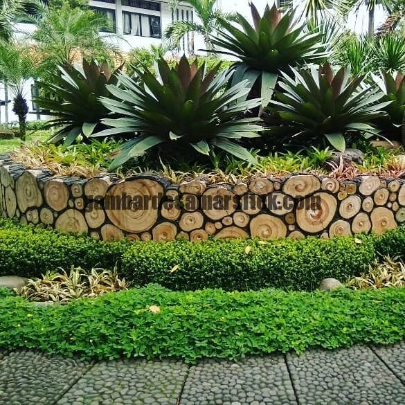 Jasa Pembuatan dan perawatan taman Bandung Jakarta Bunga hias 4