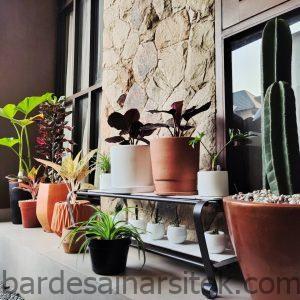 9 desain taman minimalis depan rumah yang cantik dan asri 1